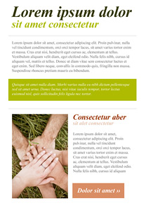 Agreement Green newsletter template
