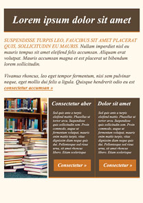 Books Brown newsletter template