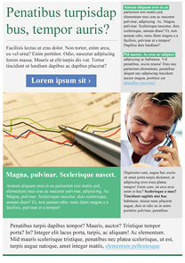 Statistics Green newsletter template