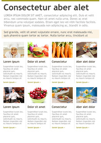 Healthy Food Guide Green newsletter template