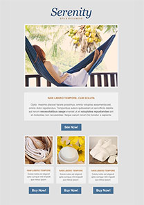 Serenity newsletter template