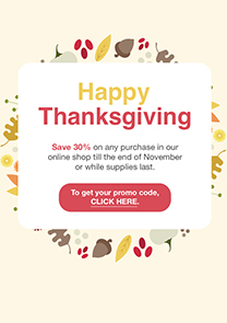 Thanksgiving Sale newsletter template
