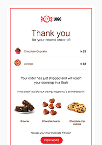 Post-Purchase Thank You newsletter template